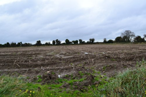 Ploughed Field at Kilcrea on the northern shore of the Broadmeadow estuary. On her travels about north county Dublin, Stacpoole would have found many flints in fields just like this.